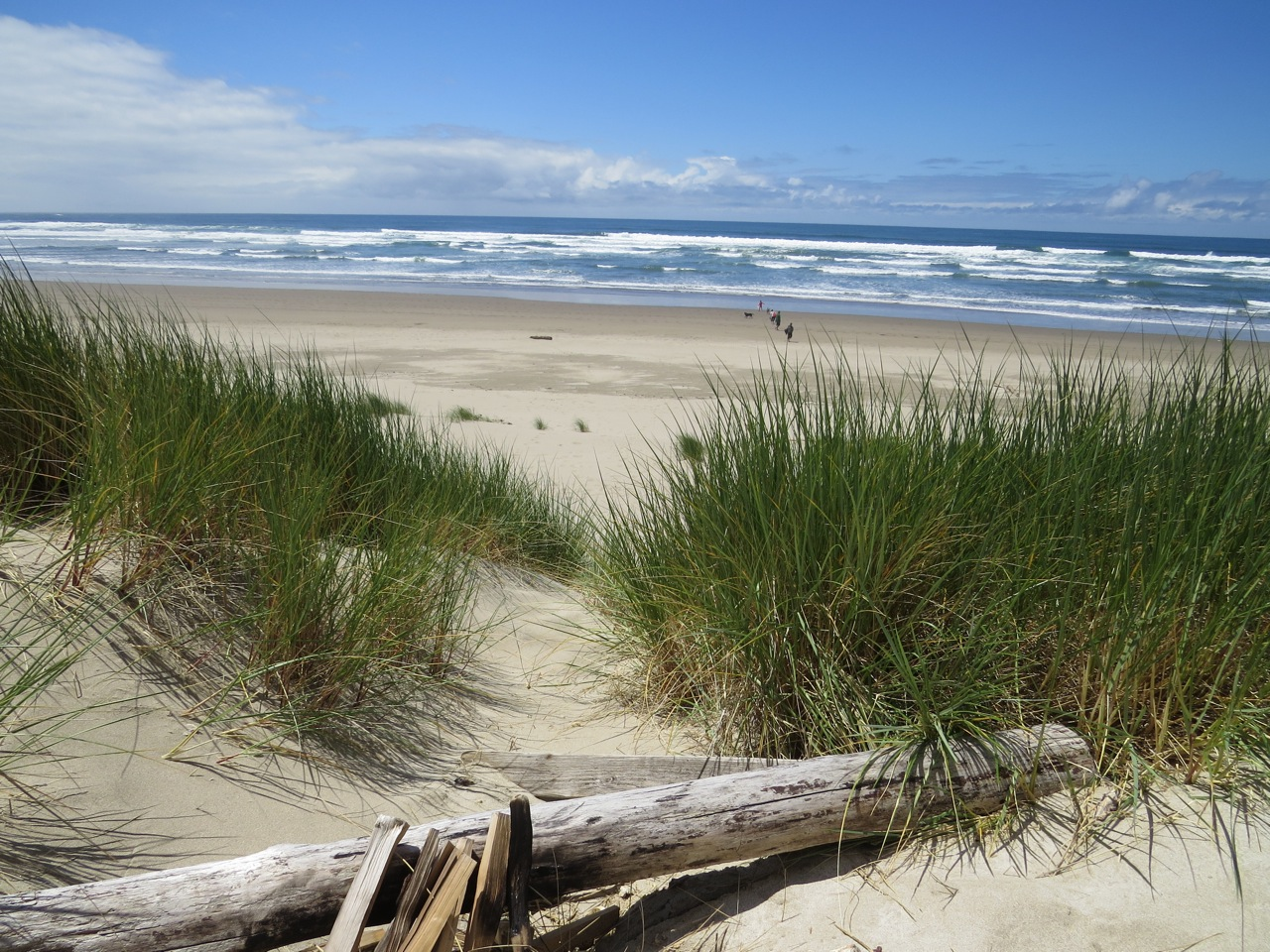 Oregon coast, Cannon Beach