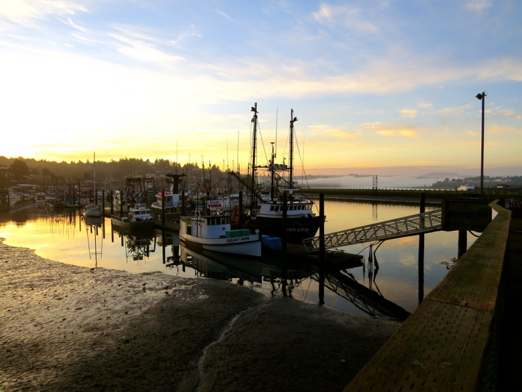 Newport fishing docks at dawn 2