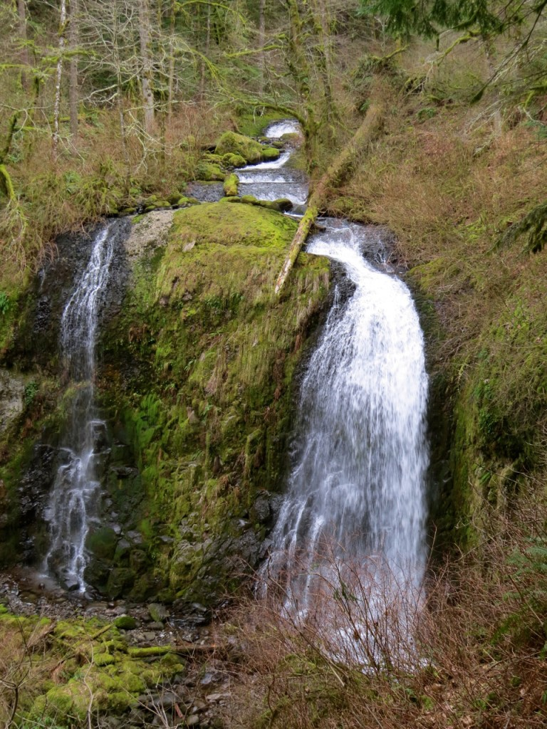 waterfall 3 copyright C Finlayson